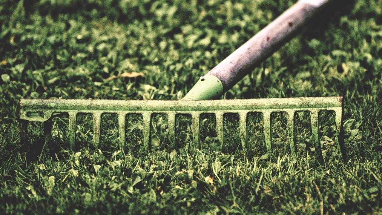 tuinonderhoud leiden en omgeving